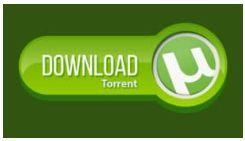 What is Torrent? Answers to all your questions are here