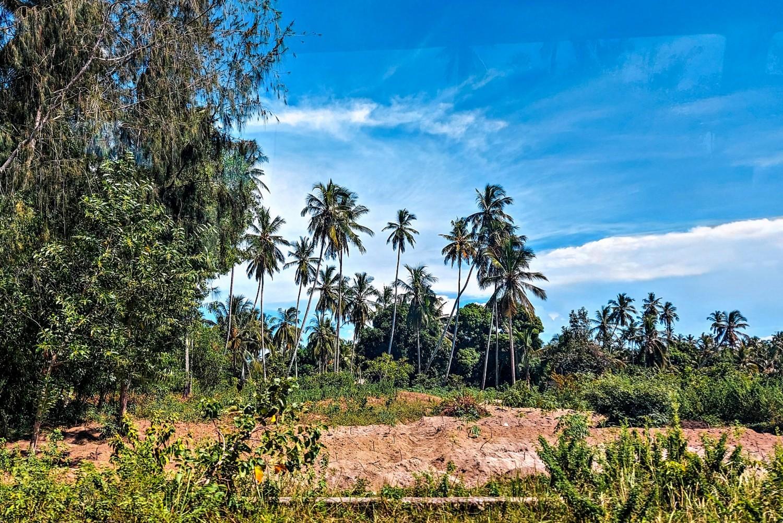 Ile kosztuje wiza na Zanzibarze?