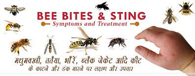 मधुमक्खी डंक लक्षण उपचार BEE STING TREATMENT
