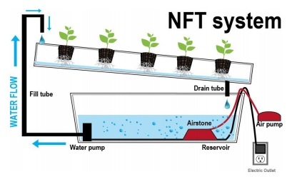 Sistem NFT (Nutrient Film Technique System)