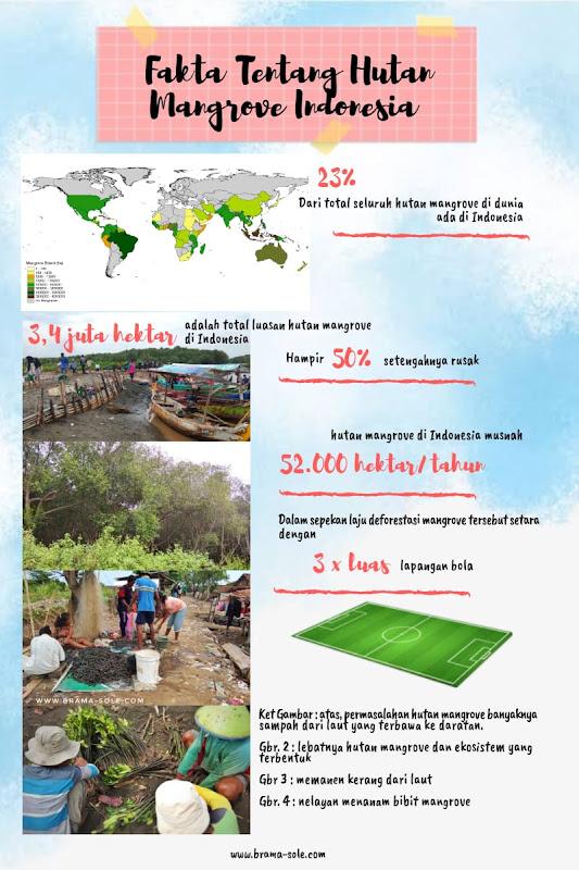 Fakta tentang hutan mangrove Indonesia