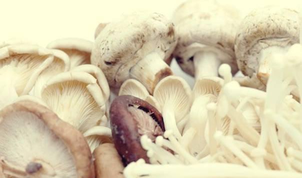Gambar jamur sebagai makanan anti inflamasi