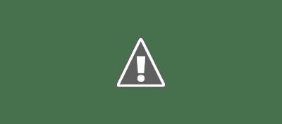 Pas grand-chose. Seulement environ la moitié des blogueurs vérifient systématiquement les performances de leur contenu à l'aide d'analytics (Google Analytics ou d'autres outils).