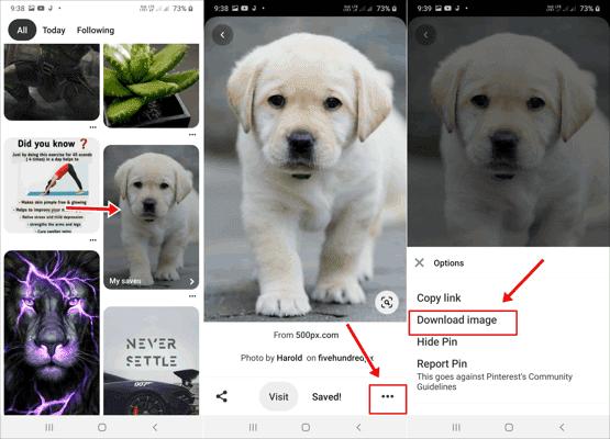Pinterest से Photo Video कैसे डाउनलोड करें