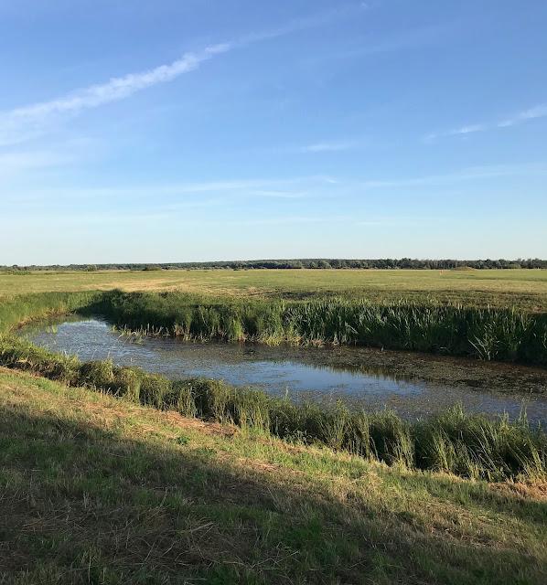 Боголюбовский луг (Bogolyubovsky meadow)