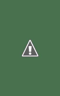 WhatsApp travaille actuellement sur une solution pour migrer l'historique du chat