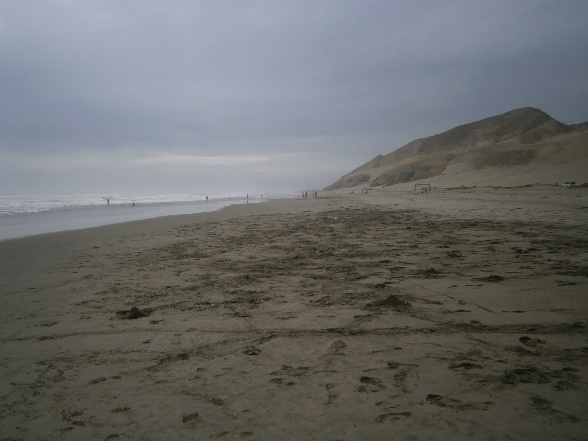 Playa acompañado de neblina