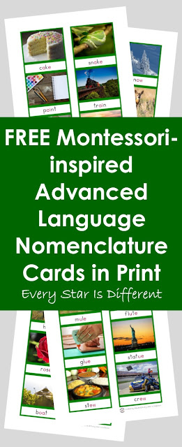 FREE Montessori-inspired Advanced Language Nomenclature Cards in Print