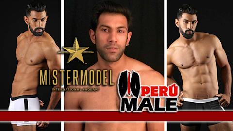 Mister Model International India 2017