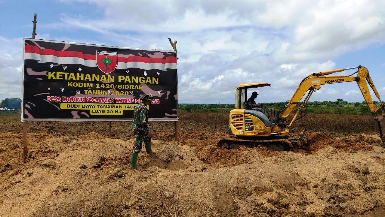 Lahan yang dipersiapkan Kodim 1420 Sidrap seluas 20 Hektar Untuk Tanam Jagung