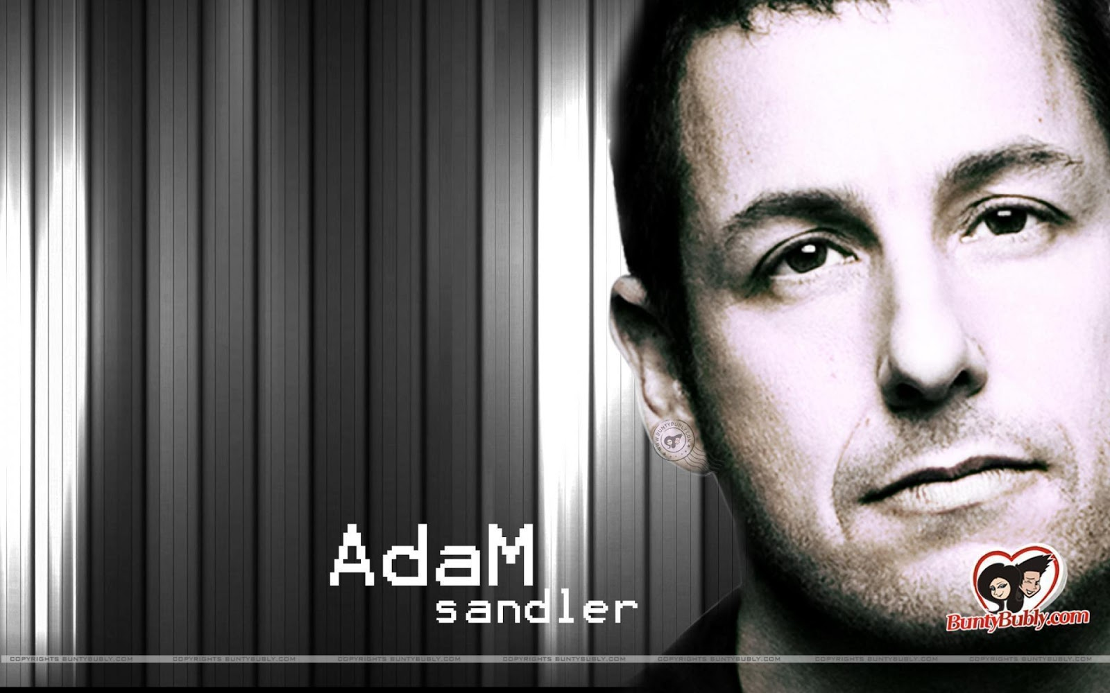 Popular Adam Sandler wallpapers and image actors photos