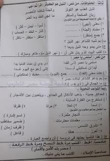 """تجميع امتحانات   للصف الرابع الإبتدائى """"الفعلى """" لغة عربية  إدارات ترم أول لتدريب عليها 81189077_2630893957142602_2569174532237557760_n"""