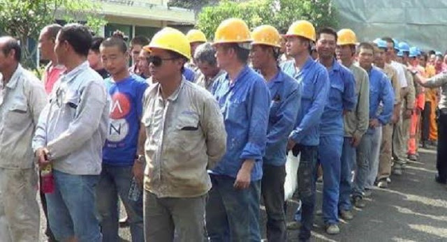 Istana Tegaskan 500 TKA China di Sultra Sesuai Peraturan