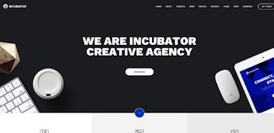 incubator wordpress theme
