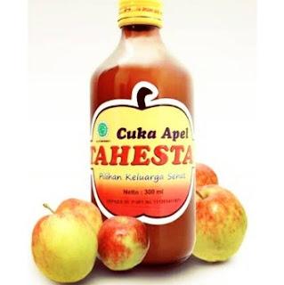 gambar Manfaat yang sudah terbukti dari sari cuka apel