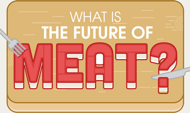 What is the Future of Meat