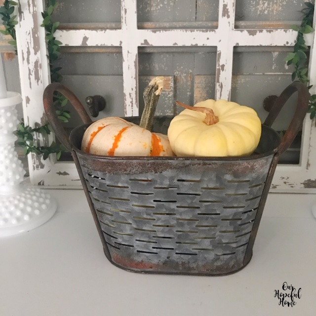 mini rusty olive bucket baby boo pumpkin