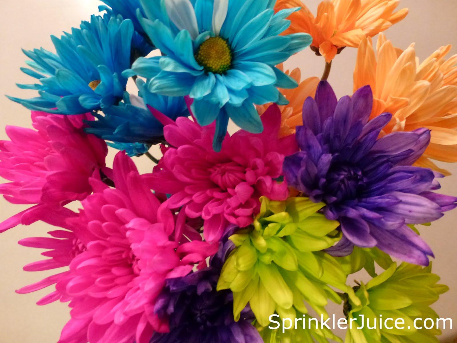 Sprinkler Juice Wordless Wednesday Spring Flowers