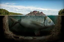 Ternyata ikan Raksasa Yang Menelan Nabi Yunus Masih Hidup Hingga Sekarang