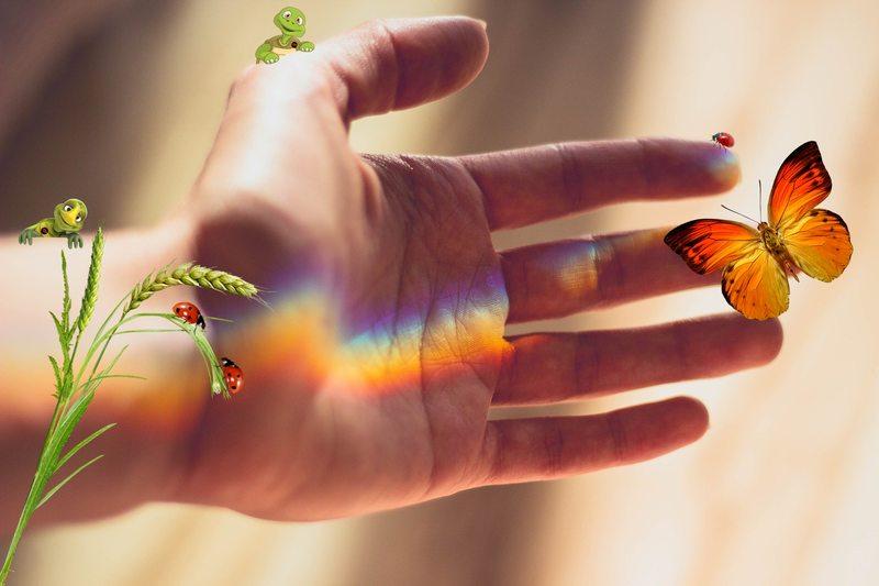 """""""A esperança é o sonho do homem acordado"""", disse Aristóteles."""
