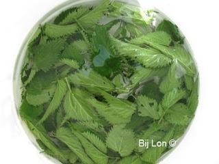 http://bijlon.blogspot.fr/2016/06/gier-voor-de-moestuinplanten.html