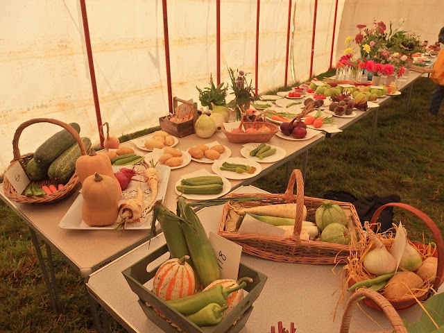 At Foxham Show in 2017 - produce nicely laid out and awaiting the judge