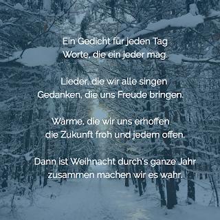 Winterwald am Ammersee