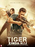 Tiger Zinda Hai 2017 Full Movie [Hindi-DD5.1] 720p & 1080p BluRay