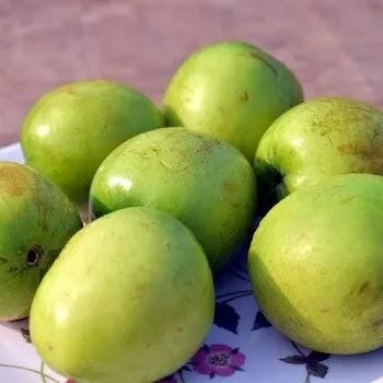 बोरं, Jujube fruits name in Marathi