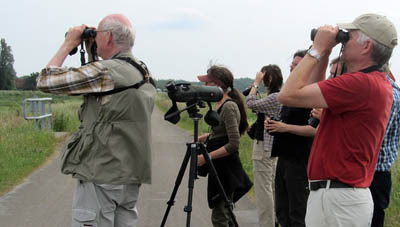 Photo of bird watchers looking at birds