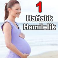1 Haftalık Hamilelik