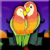 Fischers Lovebird Escape