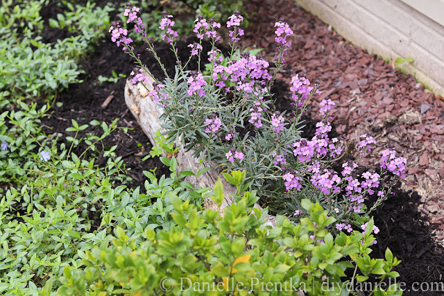 Naturally occurring wood and rocks are great additions for the garden.