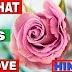 What is Love In Hindi - प्रेम क्या है? सच्चा प्यार क्या है