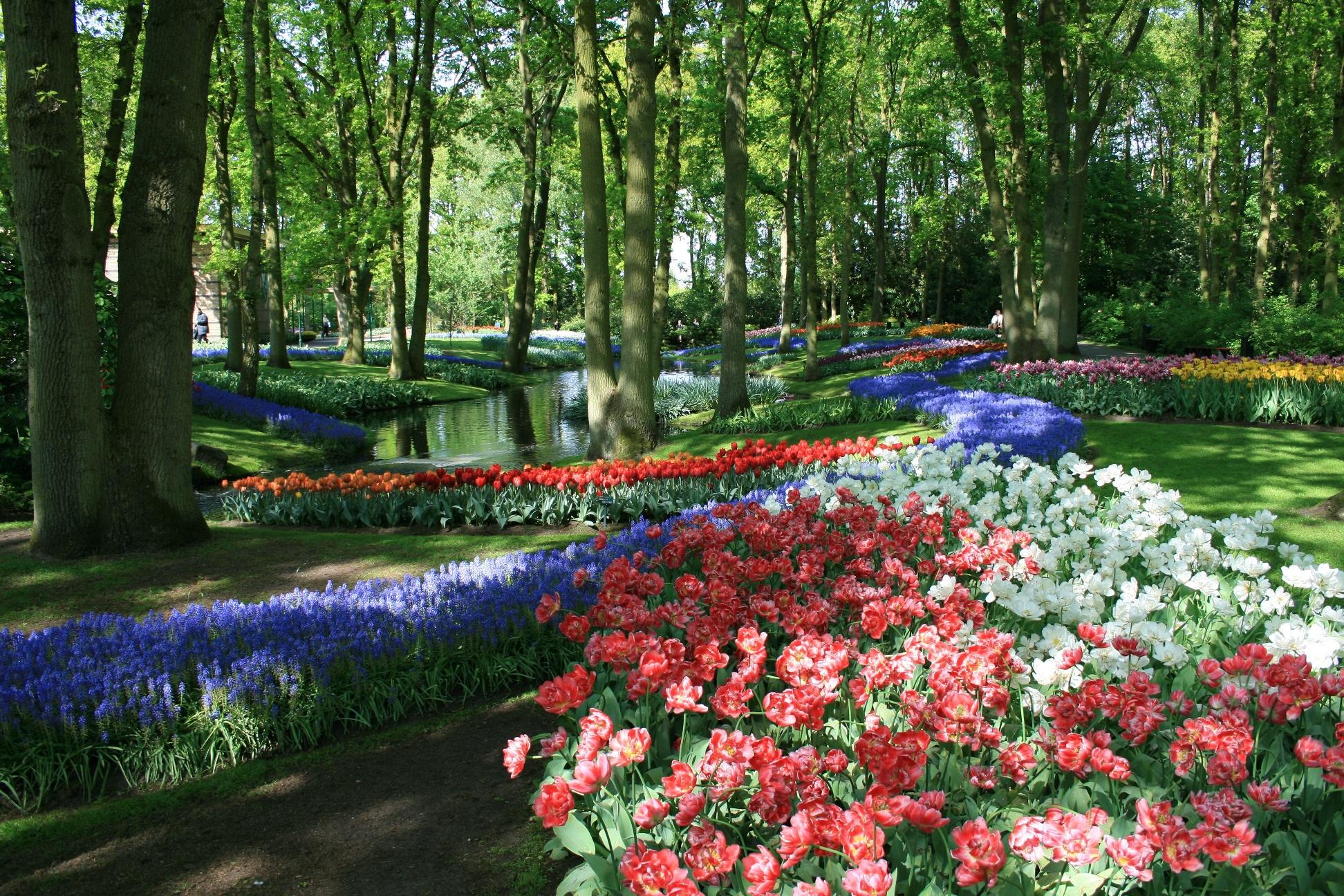 Красоты парка Кекенхоф