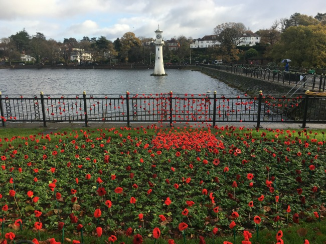 #MySundayPhoto-remembrance-Sunday-knitted-poppies-at-roath-park-cardiff-with-scott-memorial-and-lake-in-the-background