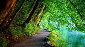 Beautiful Nature Wllpapers Mot Da