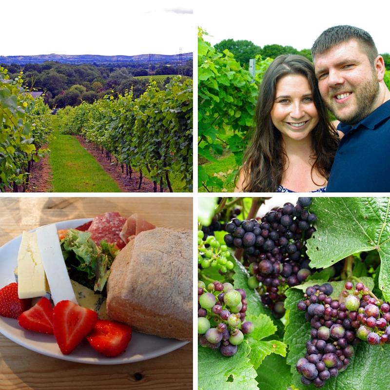 luxury winery tour at bolney wine estates