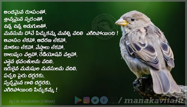 Telugu Quotes about Sparrow