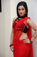 Aasma Syed in Red Saree Sleeveless Black Choli Spicy Pics ~  Exclusive Celebrities Galleries 017.jpg
