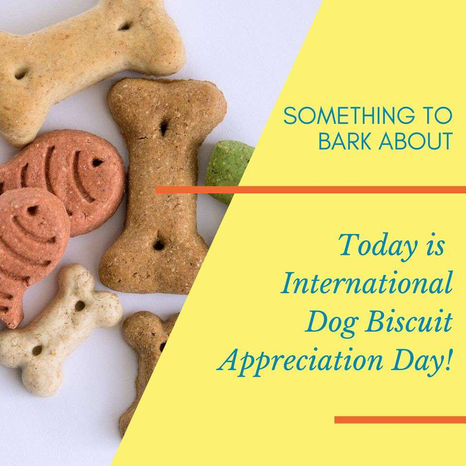 International Dog Biscuit Appreciation Day Wishes Awesome Images, Pictures, Photos, Wallpapers