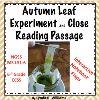 Autumn leaf experiment and reading passages