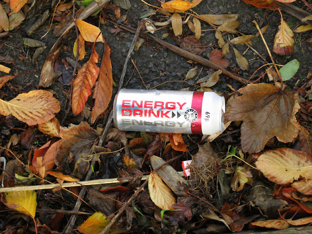 Energy drinks can, spent rocket and colourful dead leaves lie in road