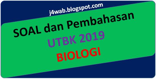 Soal UTBK 2019 Biologi dan Pembahasan
