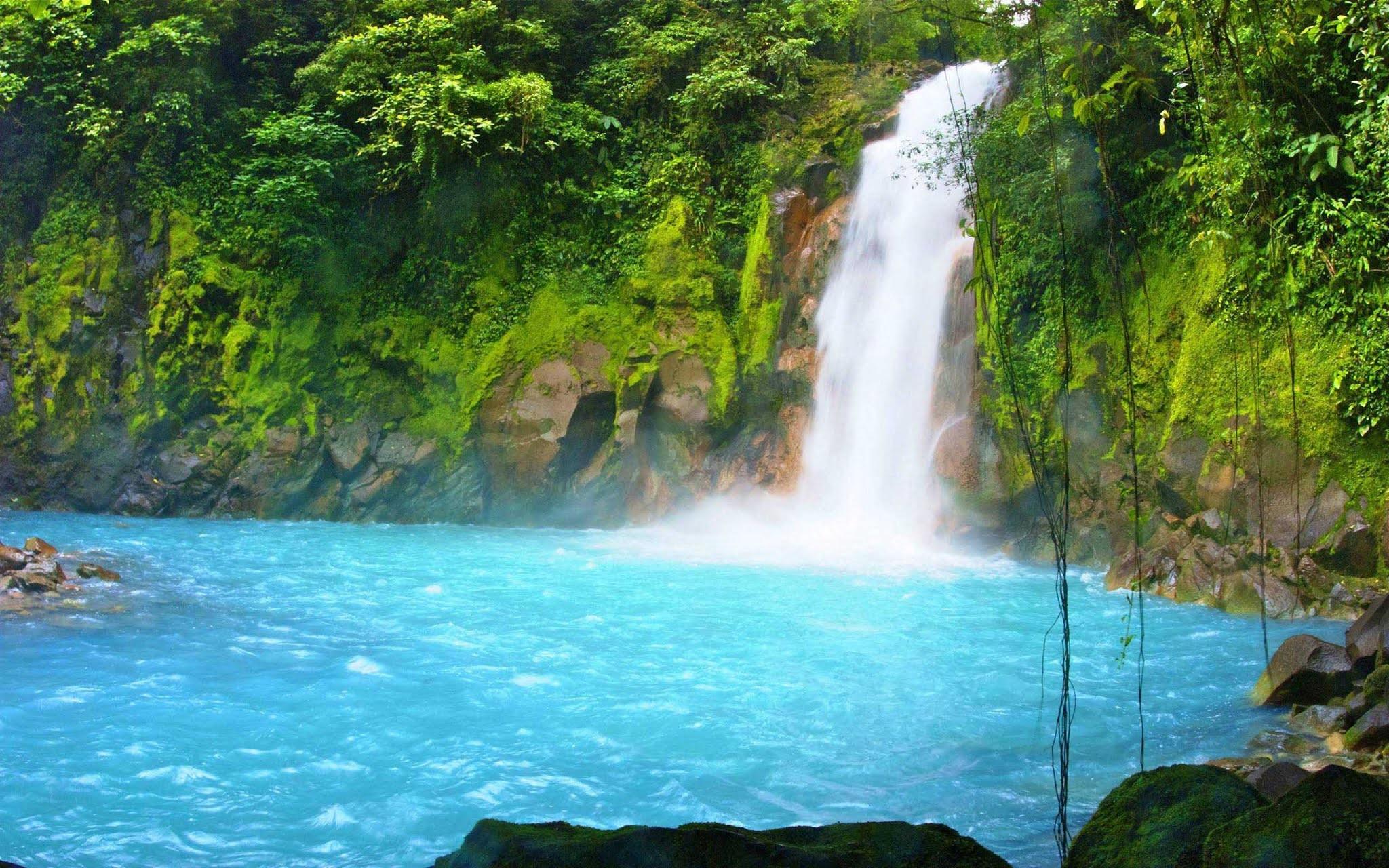 Водопад в заповеднике Кюри Канча в Монтеверде, Коста-Рика