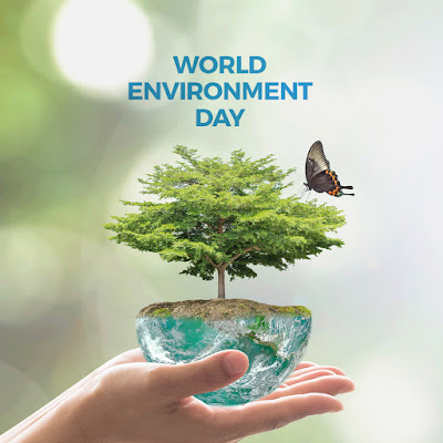 Poster featuring hands holding half of a globe that's doubling as a potted plant for a tree.  Image of a butterfly