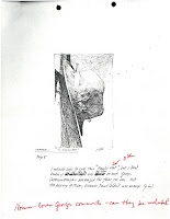 An image with commentary from Moser's papers