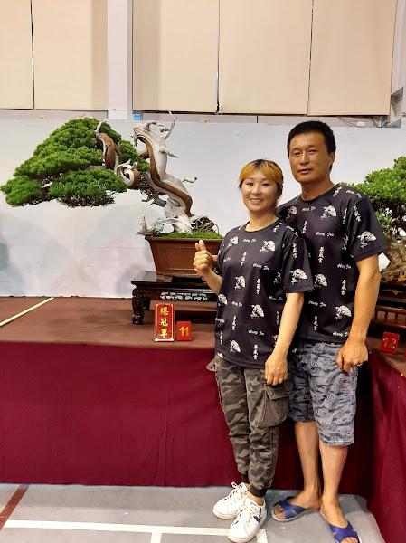 樹石藝術協會會員盆栽展 二林文化教育園區展出