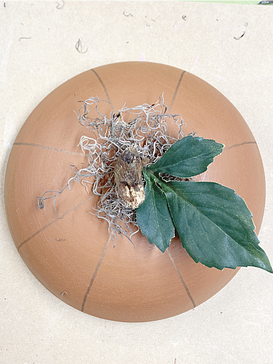 top view of pumpkin with leaf and stem