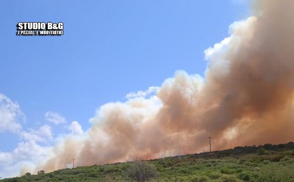 Αργολίδα: Ανεξέλεγκτη καίει η φωτιά στο Αραχναίο - Ενισχύθηκαν οι πυροσβεστικές δυνάμεις